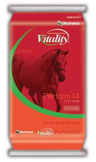triumph 12 sweet horse feed | nutrena