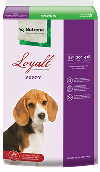 Loyall Puppy Bag - Large