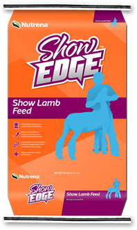 Show Edge Lamb Feed