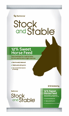 Stock and Stable Horse 12 Sweet