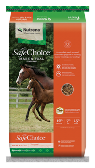 SafeChoice Mare and Foal