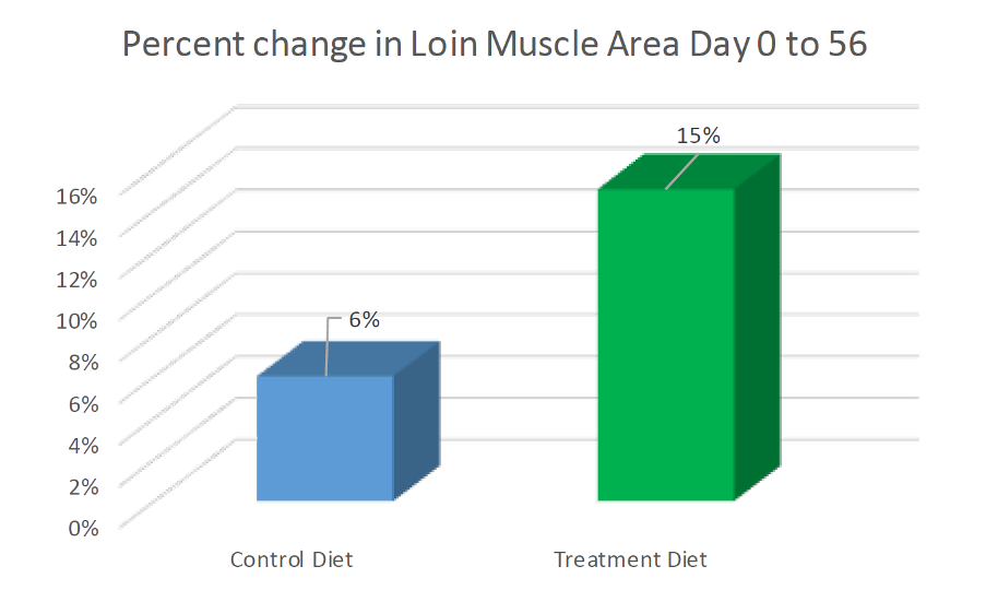 Percent Change in Loin Muscle Area