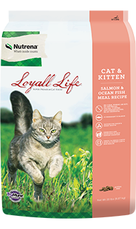 Loyall Life Cat and Kitten Salmon Food